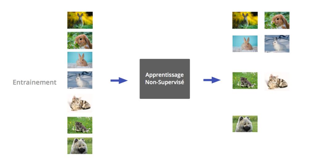 machine learning - apprentissage non surpervisé